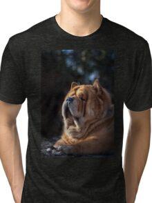 Chow-Chow portrait Tri-blend T-Shirt