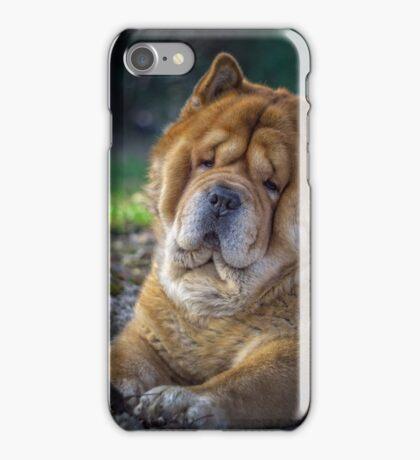 Cute chow dog portrait iPhone Case/Skin