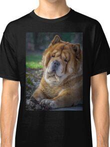 Cute chow dog portrait Classic T-Shirt