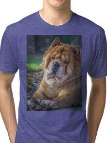 Cute chow dog portrait Tri-blend T-Shirt