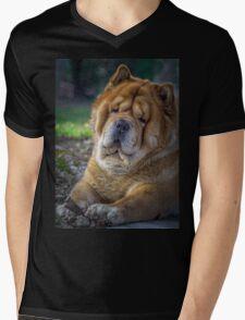 Cute chow dog portrait Mens V-Neck T-Shirt