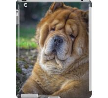 Cute chow dog portrait iPad Case/Skin
