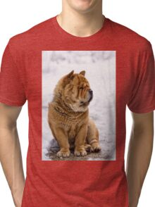 Winter chow dog portrait Tri-blend T-Shirt