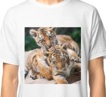 BABY TIGERS Classic T-Shirt