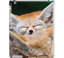 BABY FOX SLEEPING iPad Case/Skin