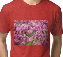 Springtime impressions - cherry blossoms Tri-blend T-Shirt