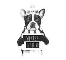 Winter is boring Photographic Print