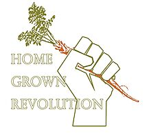Home Grown revolution Fist of Solidarity  Photographic Print