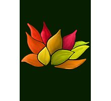 Lotus Love (Green) Photographic Print