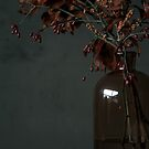 Autumn Bottle and Twigs by BBB3viz