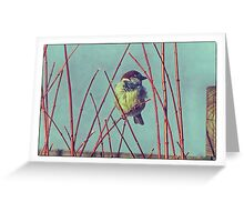 Der Kleine Spatz - Little Sparrow Greeting Card