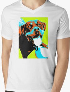 Play Ball Mens V-Neck T-Shirt