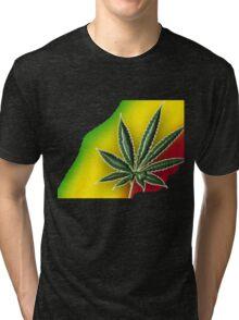 Reggae1 Tri-blend T-Shirt