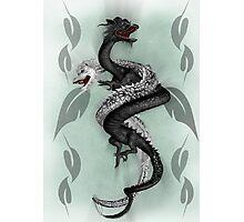 Double Dragon Photographic Print
