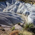 Paint Mines, Calhan CO  by Bernie Garland