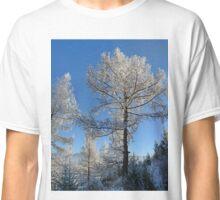 larch in snow, Siberia, Russia Classic T-Shirt