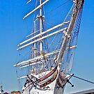 Statsraad Lehmkul by John Thurgood