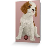 Play with Me - Cavalier Puppy Greeting Card