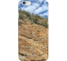 When Dinosaurs Roamed iPhone Case/Skin