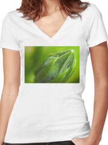Waiting for Springtime Women's Fitted V-Neck T-Shirt