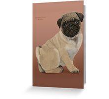 Pug Puppy Cuteness Greeting Card