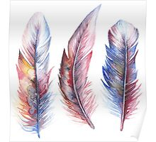 Whimsical Watercolor Feathers Poster