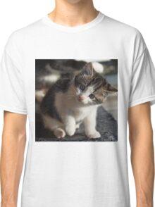 QUESTIONING KITTY Classic T-Shirt