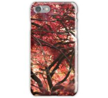 Autumnal Acer iPhone Case/Skin