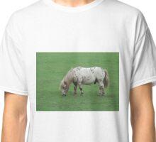 Miniature Shetland Pony Classic T-Shirt