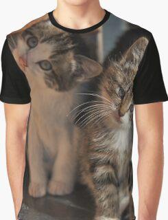 CUTE KITTIES Graphic T-Shirt