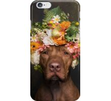 Flower Power, Rodger iPhone Case/Skin