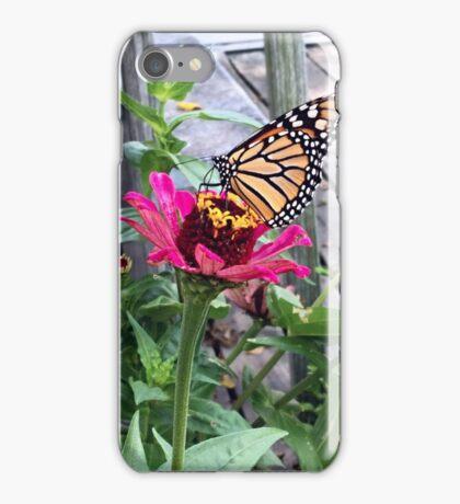 Monarch Butterfly Zinnia iPhone Case/Skin