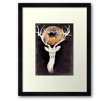 In the Wolf's Eye Framed Print