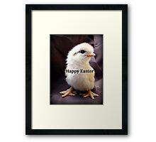 Happy Easter Chick - NZ Framed Print