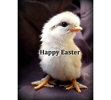 Happy Easter Chick - NZ Photographic Print