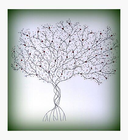 Green Hue Tree Photographic Print