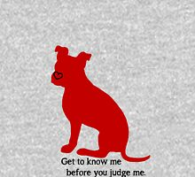 Know Me Before You Judge Me pit bull logo Hoodie