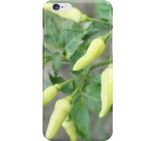 hot chili peppers on a tree iPhone Case/Skin