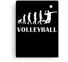 Evolution Volleyball Canvas Print