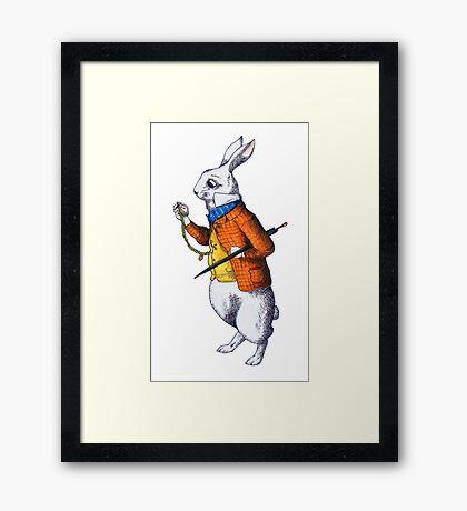 The White Rabbit Framed Print