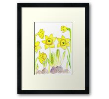Daffodil Dream Framed Print
