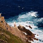 Cape Point Lighthouse, South Africa by Ludwig Wagner