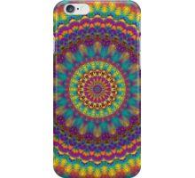 Mandala 12 iPhone Case/Skin