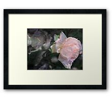 His Creation Framed Print
