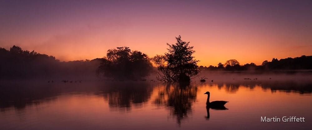 Purple Dawn by Martin Griffett