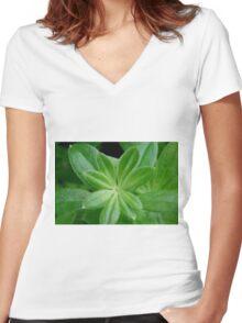 Woodruff | Waldmeister Women's Fitted V-Neck T-Shirt