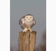 Snowy Owl prepares for liftoff T-Shirt