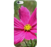 Flower & The Hoverfly iPhone Case/Skin