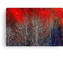 White Trees by Lena Owens/OLena Art Canvas Print