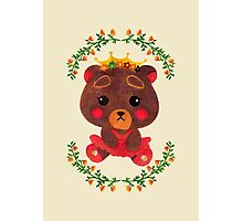 Betty the Little Bear Princess Photographic Print